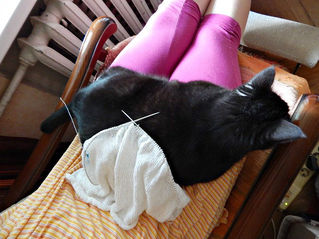 Белый свитер, середина. Чёрный кот Муся. | White cotton sweater, middle body. Musia the blac cat.