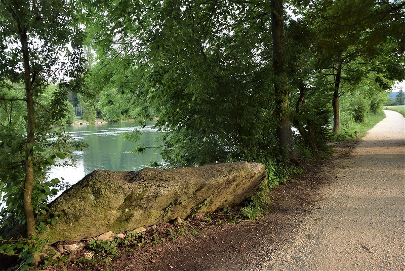 River Aar 05.06 (4)