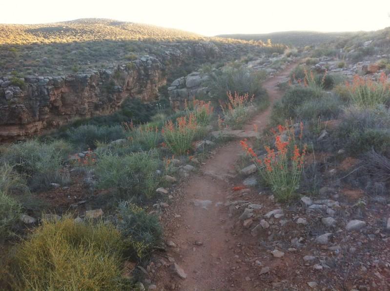 Vistas-Landscapes-Colorado