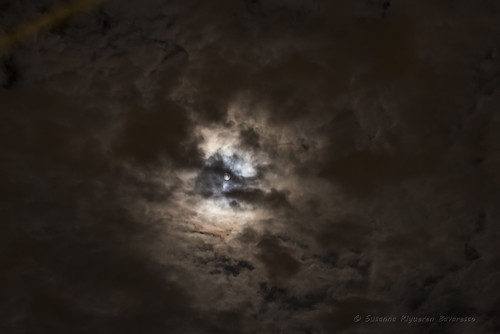 Clouds dancing in the moonlight
