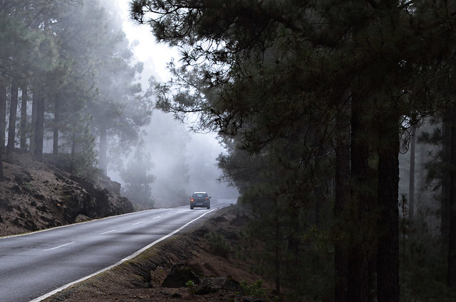 Bruma on the road to Teide, Tenerife