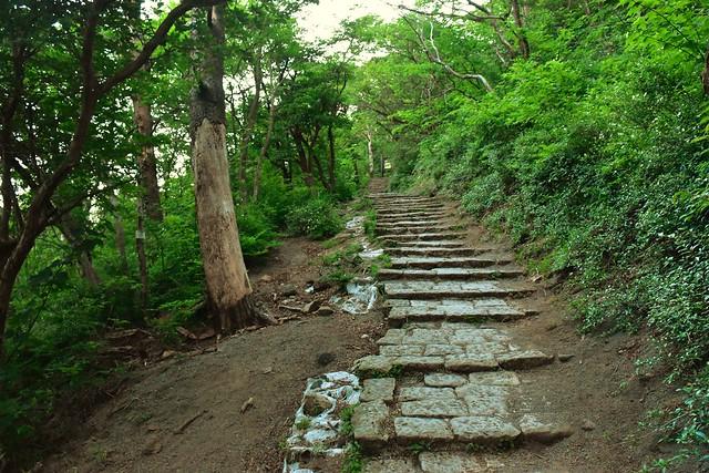 高千穂峰登山道 石の階段