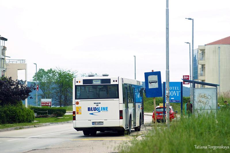 """Автобус """"Blue line"""" на конечной в Игало"""
