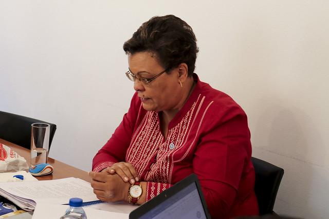 """I Reunião Técnica """"Plano de Leitura CPLP"""" do IILP"""