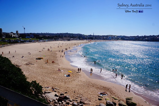 Day 2 - Bondi Beach 03