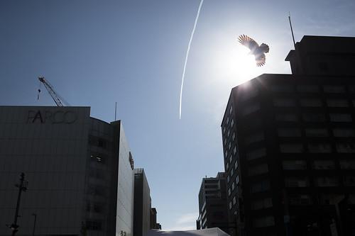 JA C5 03 018 福岡市中央区 Nikon Df × AF Nikkor 35mm F2 D#