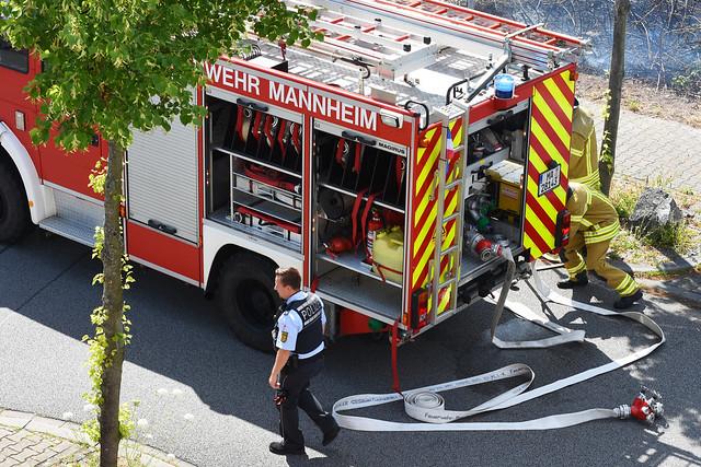 3. Juli 2017. Brand auf dem unbebauten Grundstück Ecke Badenweiler-/Ihringer Straße in Mannheim-Seckenheim ... Feuerwehreinsatz mit drei Löschzügen ... Foto: Brigitte Stolle