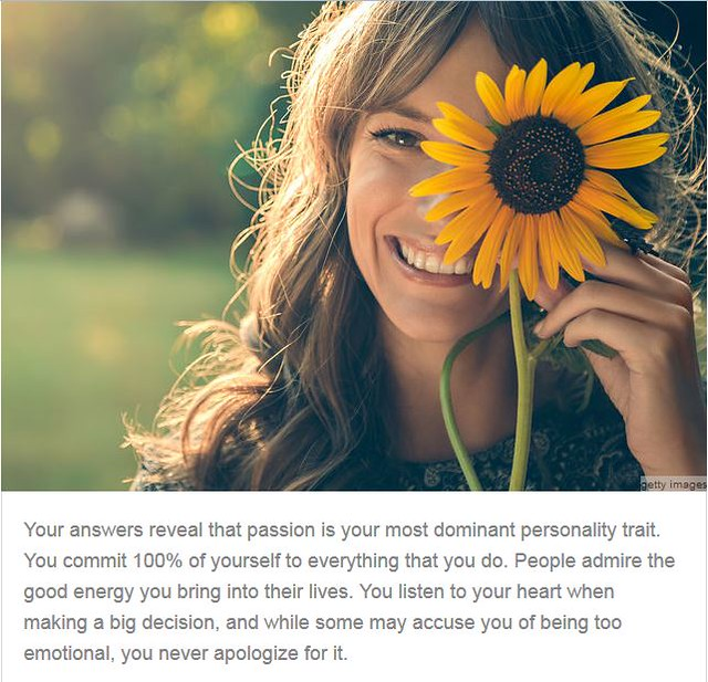 Survey Says – Leading Personality Type | baking in my