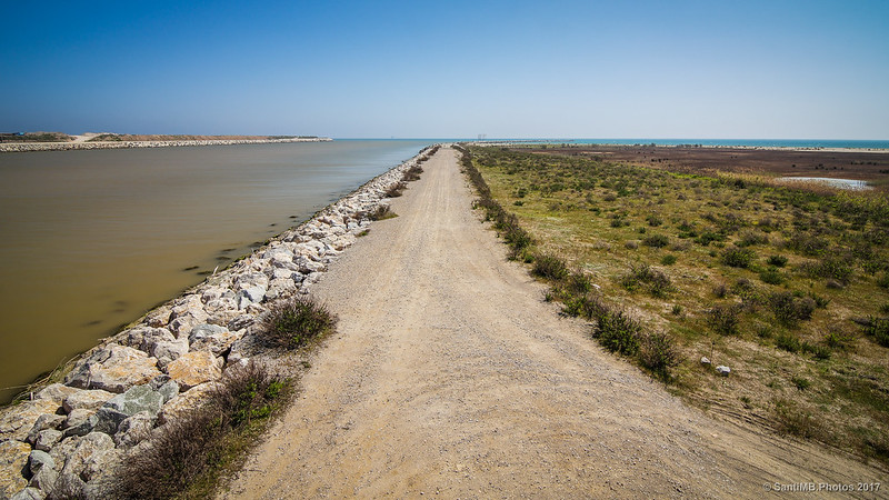 Desembocadura del Llobregat