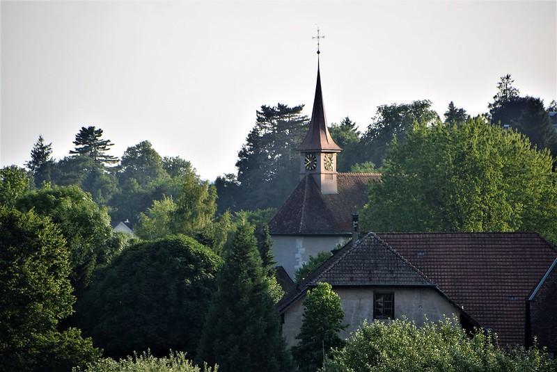 Feldbrunnen 24.06 (9)