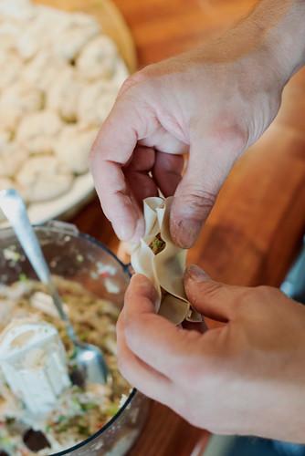 matognaturfoto dumplings 06