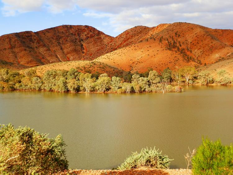 Aroona Dam Sanctuary, via Copley, Outback South Australia
