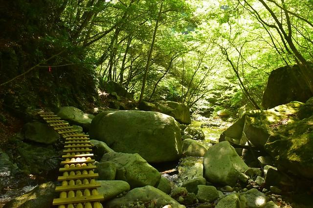 畦ヶ丸 渓流歩き