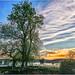 """La balade au lever du jour sur les bords de la Seine """"2017"""""""