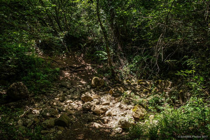 Cruzando el Torrent de Can Reixac yendo hacia el Gorg de Santa Margarida