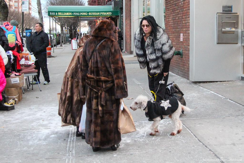 Жители города Нью-Йорка - 8: Брайтон-бич samsebeskazal-0548.jpg