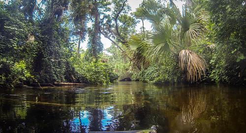 Juniper Springs Creek-28