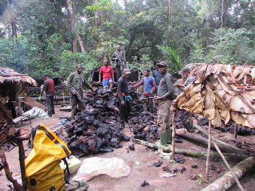 hunting camp raid in park