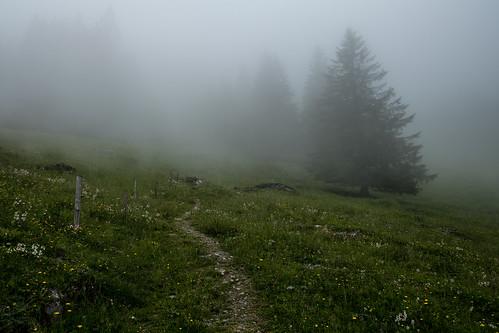 Gerschnialp / Obwalden CH