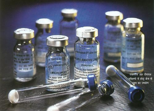 एलएएल और टीएएस परीक्षणों में हॉर्शू क्रैब के रक्त का उपयोग
