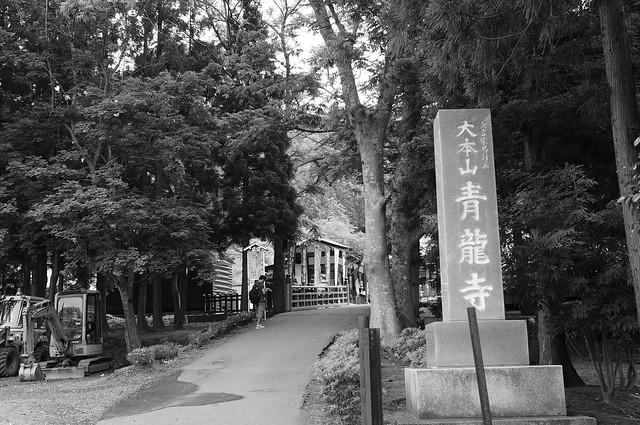入口 entrance