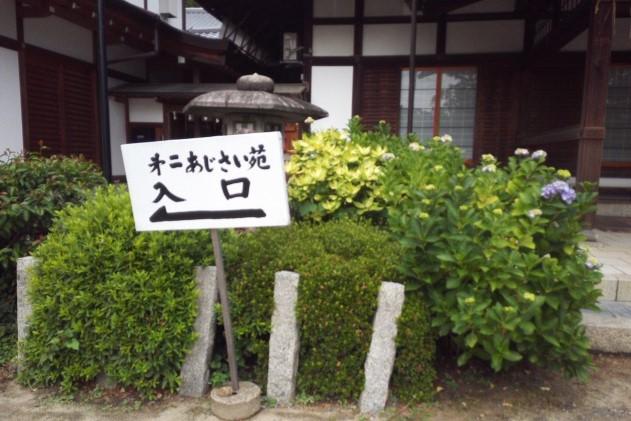 藤森神社の第二あじさい苑