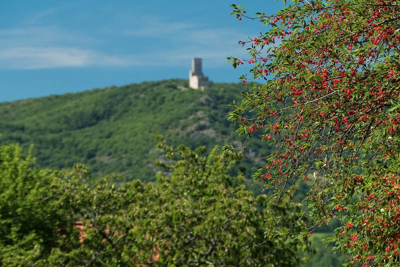 La cerise sur le chateau ou le chateau sur la cerise 35262870062_0783d622bd_c