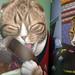 2017-06-14 - Star Trek Cats - 0004 [flickr]