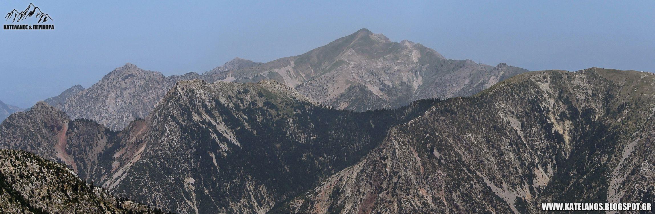 χελιδονα βουνο