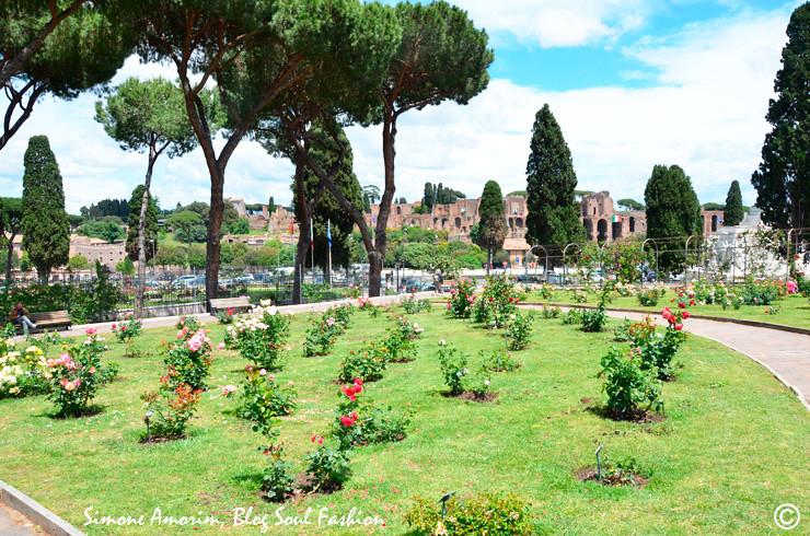 Que tal passar uma tarde nesse jardim?