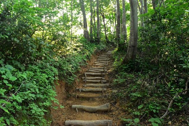 二王子岳登山道