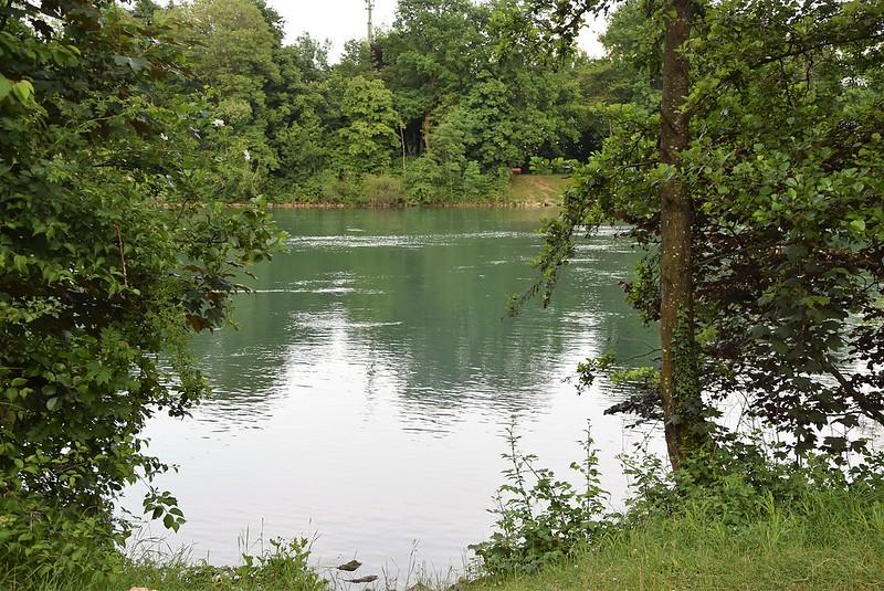 River Aar 05.06 (7)