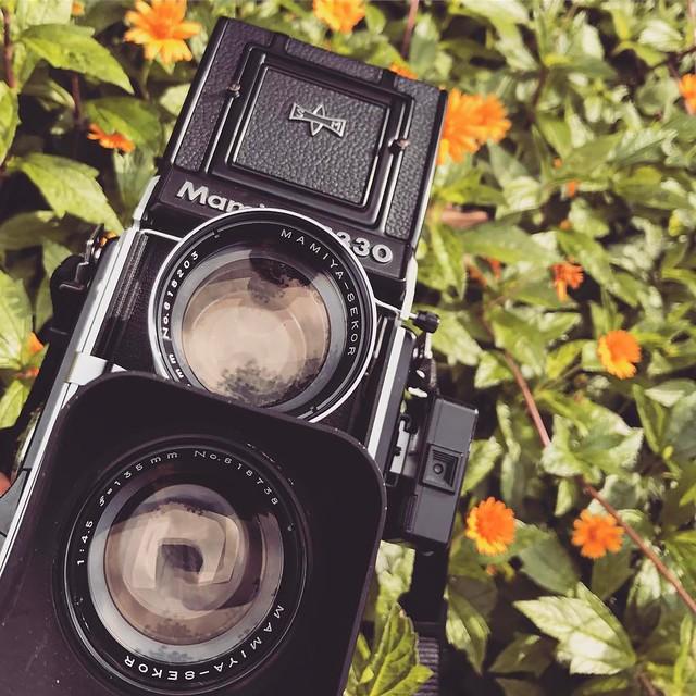 Mamiya C330S X 135mm f4.5