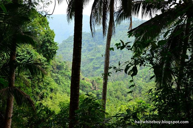 halfwhiteboy - talay falls, hidden falls, luisiana, laguna 03