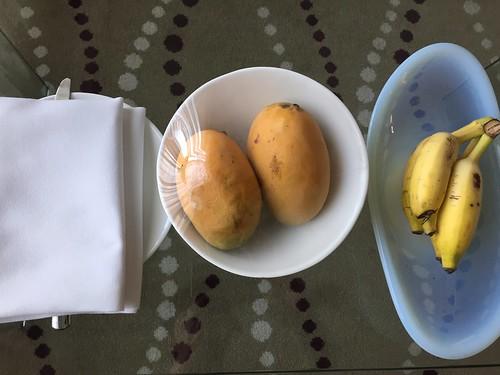 Mangos and bananas supplied daily!