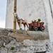Donkey and cart decor on pathway from Ravello to Minori, Amalfi Coast, Italy