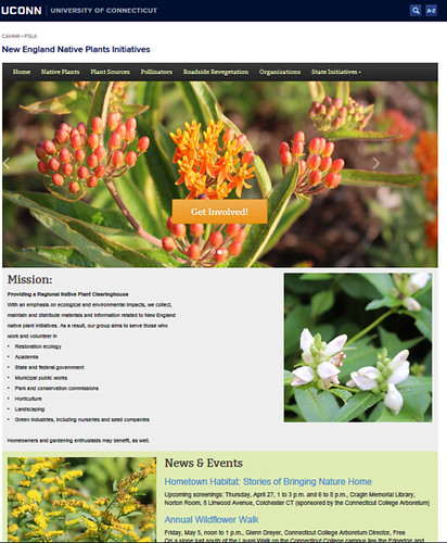 Native plants website
