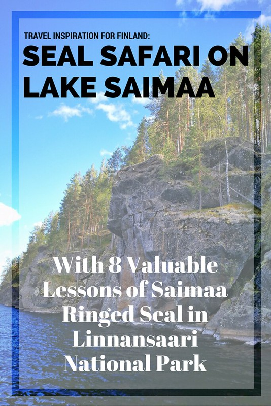 Seal Safari in Finland With 8 Valuable Lessons of Saimaa Ringed Seal in Linnansaari National Park | Live now – dream later travel blog