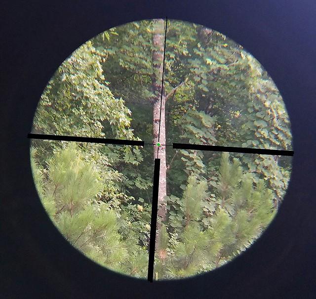 1-4x24egreen