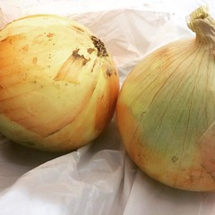 more huge onions, this time from awajishima, thank you again mayumi-san! #awajishima #japan #onion #淡路島 #玉ねぎ