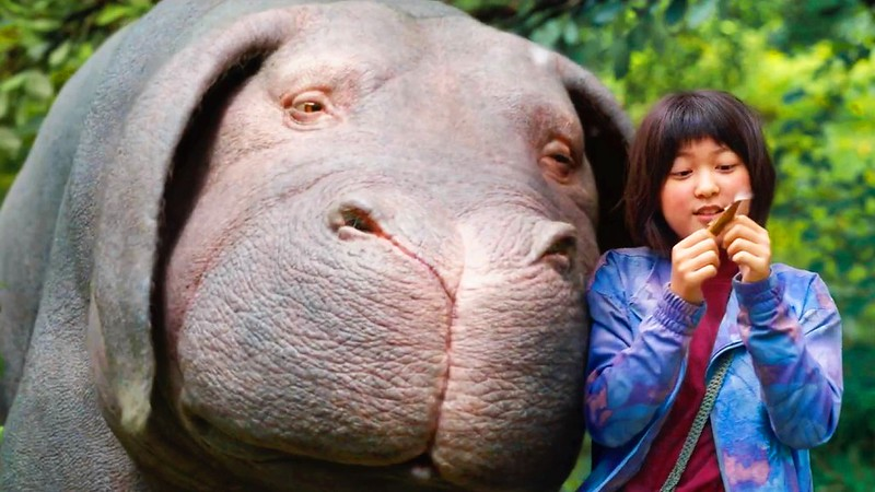 Seo-Hyun Ahn shares some screen time with the 'super pig' OKJA.