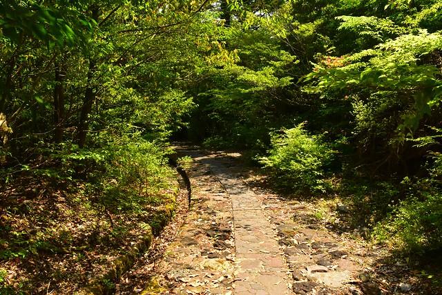 韓国岳・大浪池コース