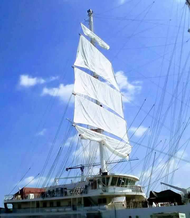 صور السفينة الشراعية الجزائرية  [ الملاح 938 ] - صفحة 5 35105179703_d9b1a28e8b_o
