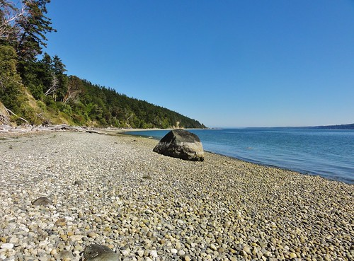 Image shows a swath of tan-colored shingle beach, with some larger rocks upstanding. A huge black erratic covered halfway up by barnacles stands close to the water's edge. A forested hillside slopes down to the blue Puget Sound water.