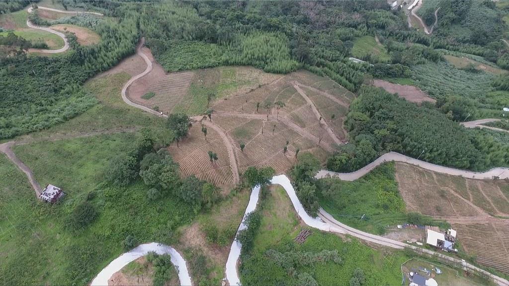 917-3-8新竹縣尖石鄉梅花村後方山坡上,遭到大面積開發,樹木被砍除,形成山林破碎化現象。