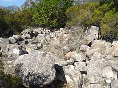 Le caseddu ruiné sur le plateau