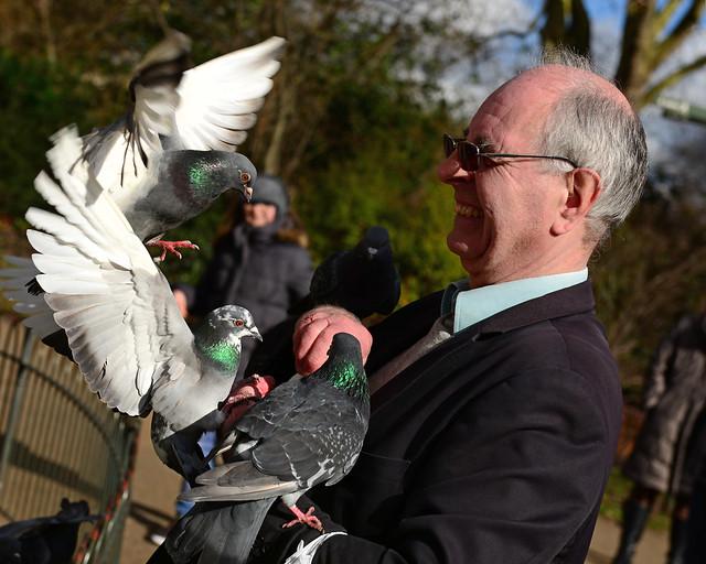 Entre palomas en uno de los parques más bonitos de Londres