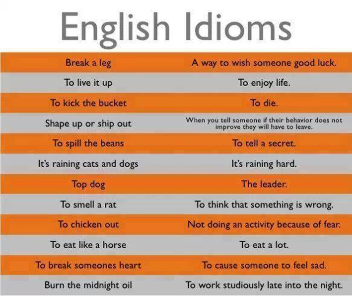 5 example of proverbs in english
