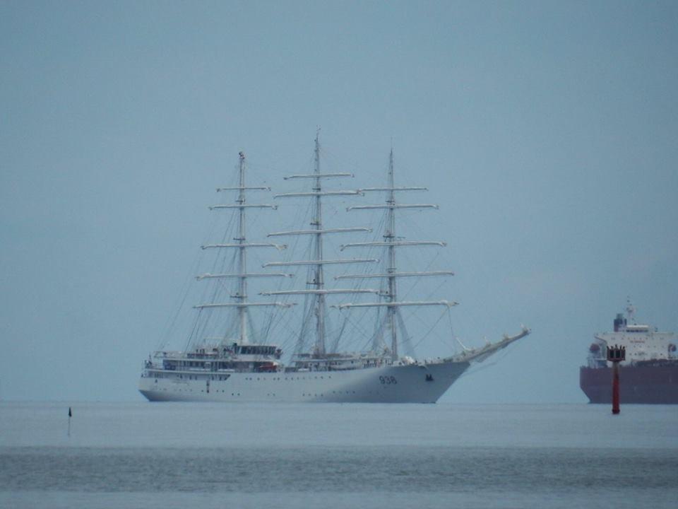 صور السفينة الشراعية الجزائرية  [ الملاح 938 ] - صفحة 8 35717999630_f52a5af592_o