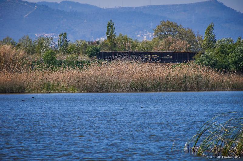 Mirador de Cal Tet desde el Aguait de Cal Tet